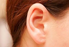 Ear Specialist